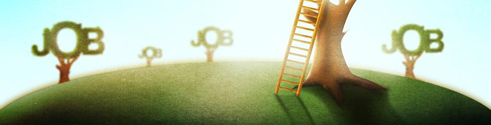 Translatør jobs
